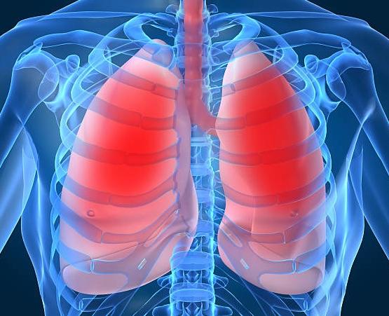 Serrapeptase For Lung Health